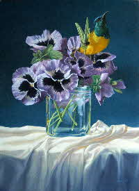 pansies and sunbird-