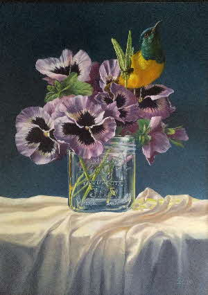 pansies and sunbird by tonkinson